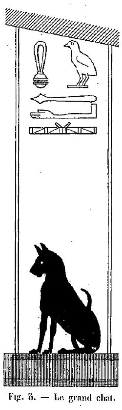 Fig. 3. : Le grand chat
